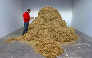 Italian Sven Sachsalber will spend 48 hours looking for a needle in a haystack