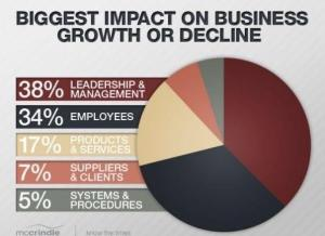 Biggest Impact on Business Growth OR Decline is Leadership at 38%