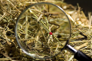 Recruitment for Resource Planning and Analytics a Needle in a Haystack